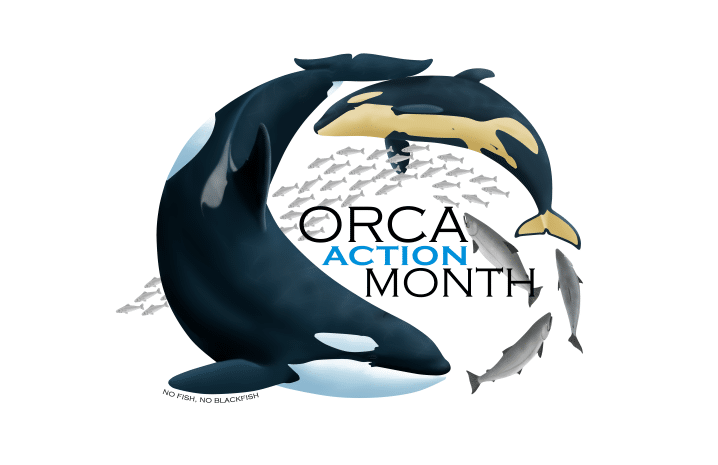 2019-orca-action-month-logo