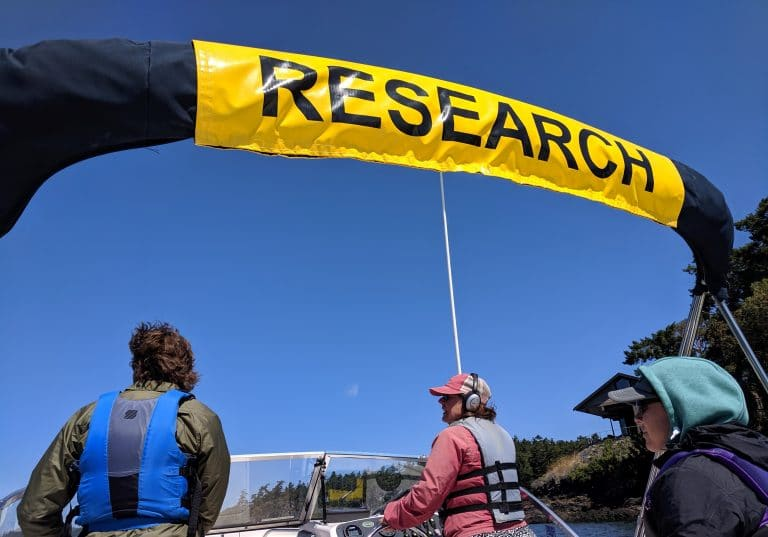 Provide visual of research effort and team