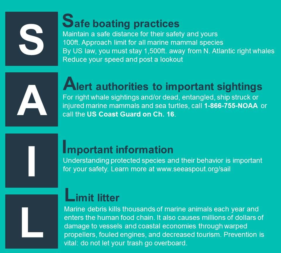 SAIL acronym