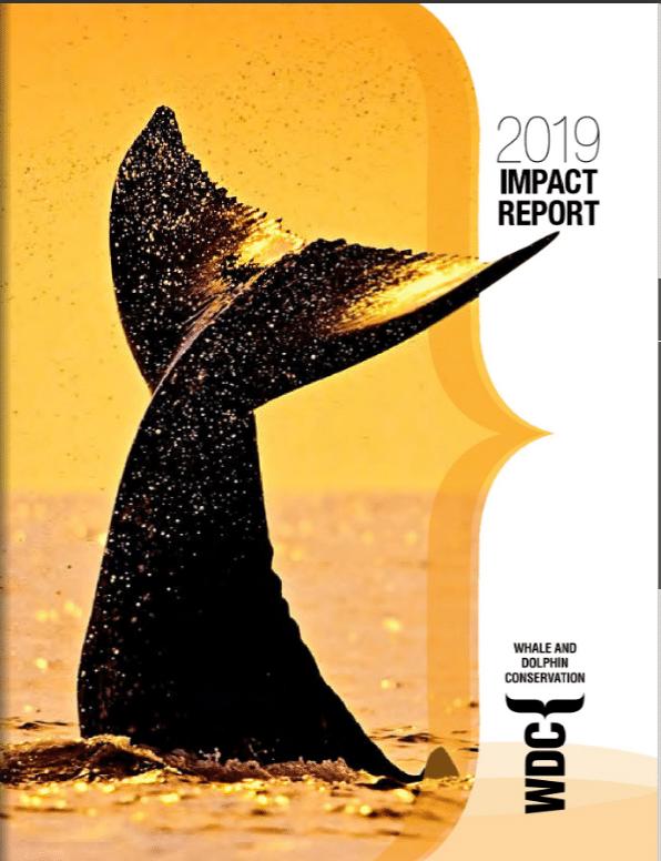 FY2019 Imapct Report
