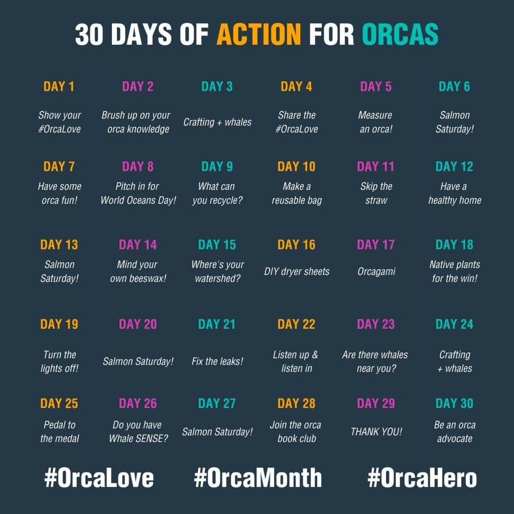 Orca Action Month daily action calendar