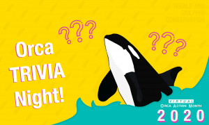 Orca Month Trivia