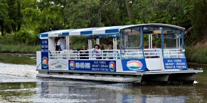 Cape Water Tours