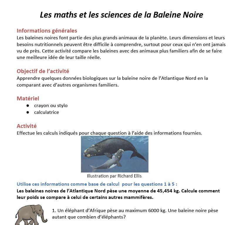 Math&Science Activity screenshot Francias